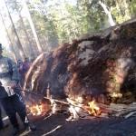 Podpalanie drewna